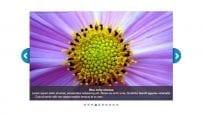 افزونه گالری تصاویر JXTC Easy Image Gallery