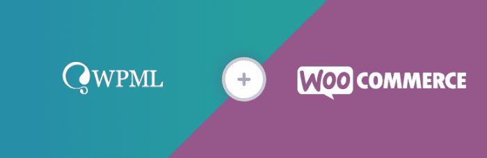 افزونه چند زبانگی WooCommerce Multilingual وردپرس | The Best WordPress Plugins | طراحی سایت آسان