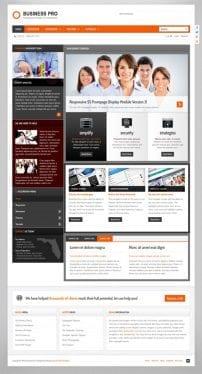 قالب شرکتی و تجاری S5 Business Pro
