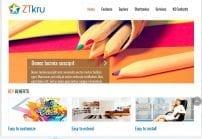 قالب بلاگ شخصی و گالری ZT Kru