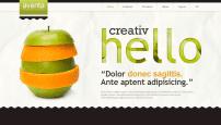 قالب طراحی وب و هاستینگ JXTC Aventa