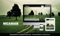 قالب عکاسی و گالری هنری TZ Nicanian