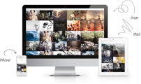 قالب عکاسی و گالری هنری TZ Digital Pixel