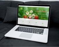 قالب شرکتی و فارسی اردیبهشت | طراحی سایت جوملا | دانلود قالب رایگان جوملا | Joomla Proffesional Templates |