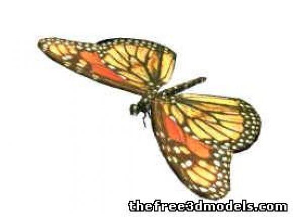 l23848 butterfly 29086 - افزونه ها | شبکه خرید و فروش منابع دیجیتالی