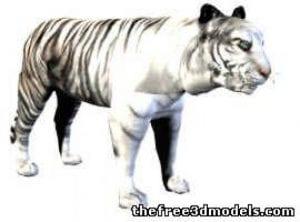 l26628-white-tiger-52898