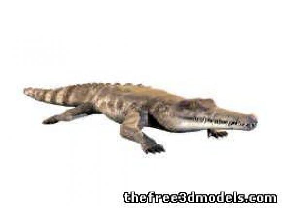 l3561 crocodile 27619 15522191 - افزونه ها | شبکه خرید و فروش منابع دیجیتالی