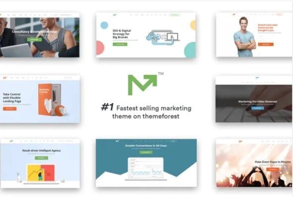 قالب وردپرس دیجیتال مارکتینگ Marketing Pro – SEO, Landing, Marketing Theme