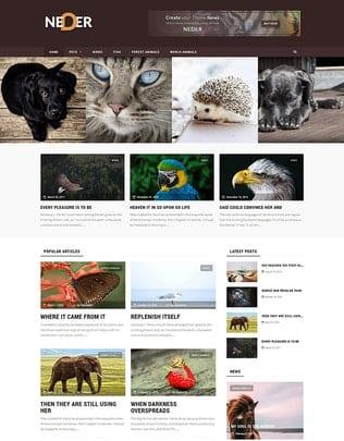 پوسته وردپرس مجله و بلاگ Neder - WordPress News Magazine and Blog Theme