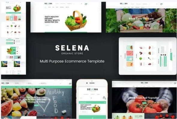 قالب فروشگاه محصولات غذایی ارگانیک Selena - Organic Responsive Magento Theme