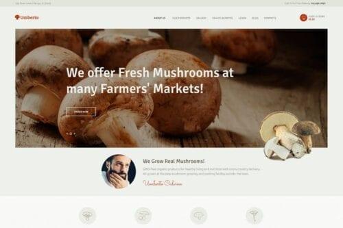 قالب وردپرس محصولات ارگانیک Umberto - Mushroom Farm & Organic Products Store