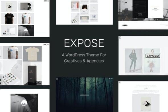 قالب وردپرس پورتفلیو EXPOSE - Creatives & Agency WordPress Theme