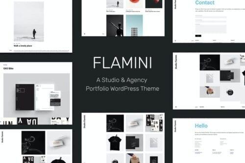 قالب وردپرس پورتفلیو Flamini - Studio/Agency Portfolio WordPress Theme
