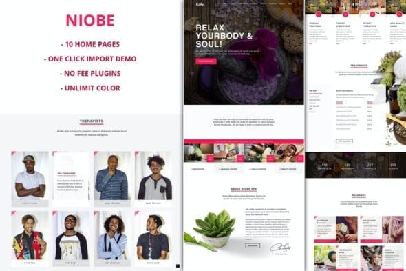 قالب وردپرس ماساژ و اسپا Niobe - Spa & Salon WordPress Theme