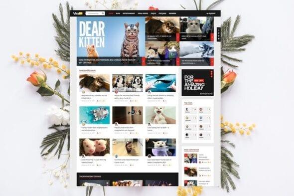 پوسته وردپرس خبرنامه و مجله ViralVideo - User Membership News / Magazine Theme